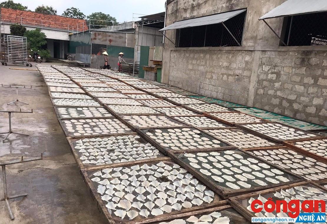 Các làng nghề chế biến hải sản đã và đang gây nên tình trạng ô nhiễm nghiêm trọng hiện nay