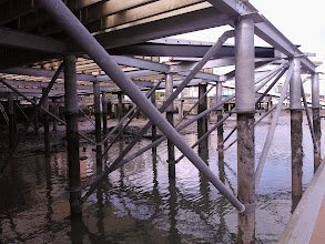 Photo: General view of the underside of the apron looking North from the marina pontoon.