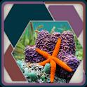 HexSaw - Undersea icon