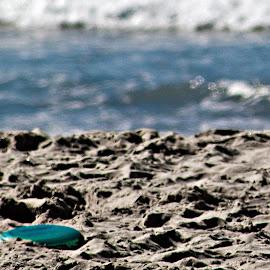 Frisbee Anyone... by Sherry Hallemeier - Landscapes Beaches ( sand, games, beaches, california, outdoors, summer, ocean, activities, sandy, beach, activity, frisbee,  )