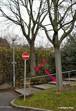 Photo: Markierte Bäume an der Einfahrt zum Leuze-Parkhaus