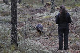 Photo: Tanja og Kahn går spor