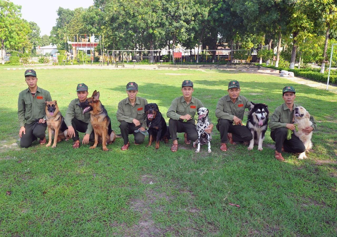 Tiêu chí lựa chọn trường huấn luyện chó uy tín