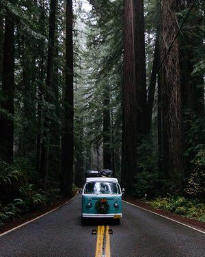 Road trip is always a good idea! #travel #reaveling #trips