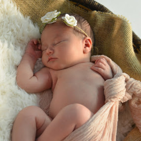 sweet angel by John & Sharon Green - Babies & Children Babies ( infant photography, baby girl, baby photography, portrait, newborn )