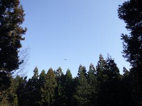 上空は良い天気
