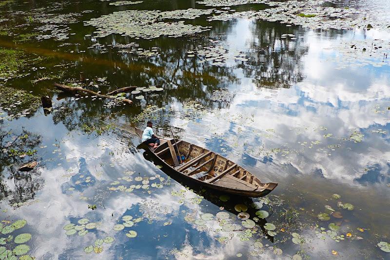 Monet Claude -Water lilies di Zaporogo