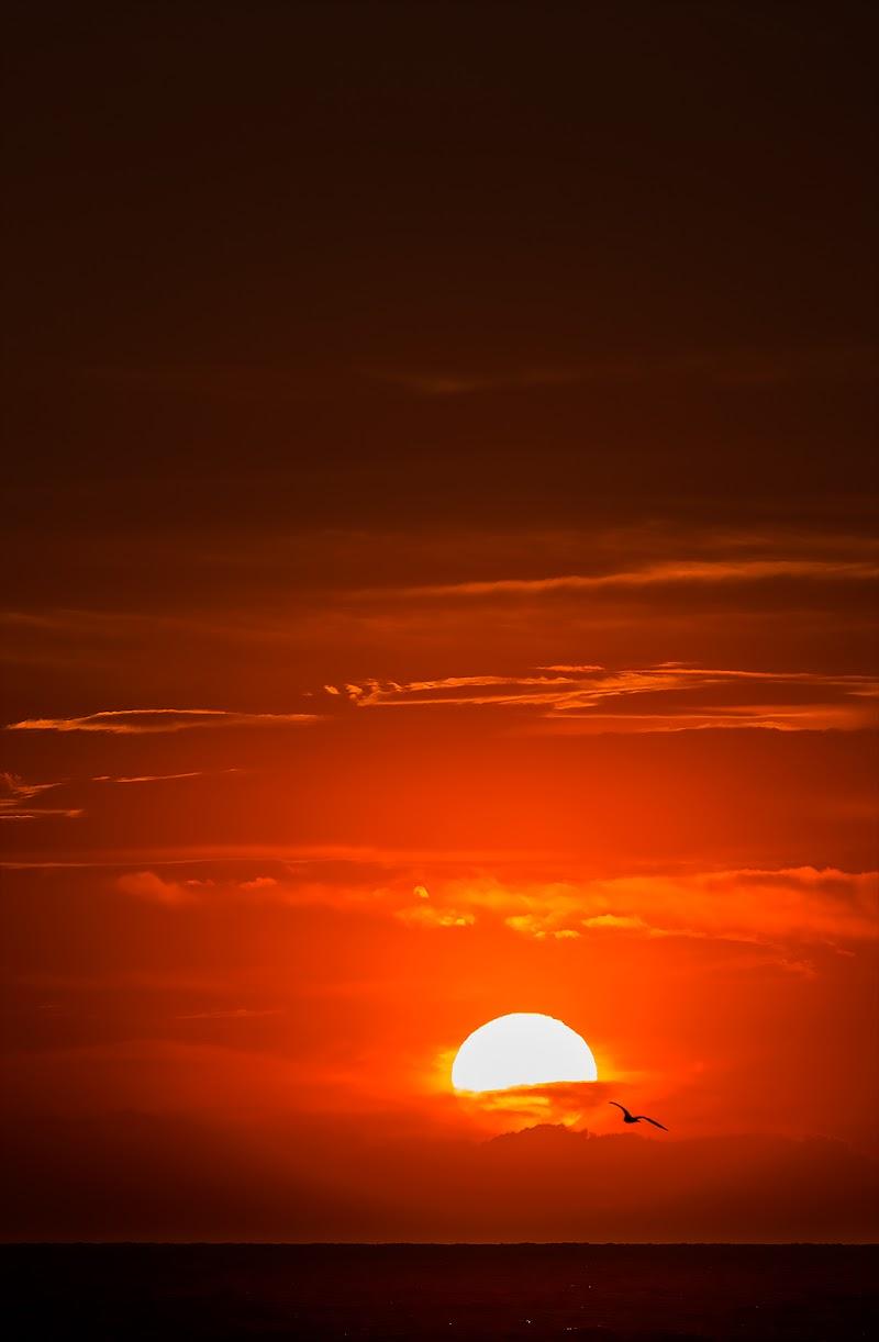 alba rossa di Franz78