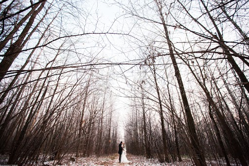 Wedding photographer Sergey Rolyanskiy (rolianskii). Photo of 05.03.2015