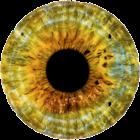 Тест на дальтонизм Ишихары icon
