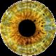 Ishihara Color Blindness Test APK