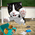 Cat Simulator - and friends 🐾 file APK for Gaming PC/PS3/PS4 Smart TV