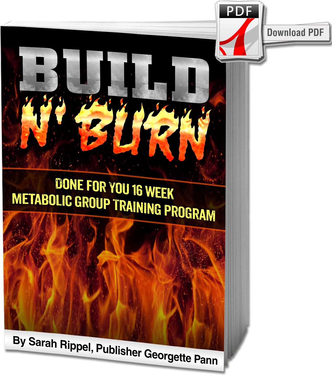 Build N Burn Easy Circuit To This Is A Complete 16 Week Metabolic Strength Training Program That Utilizes Circuits And Promote Fat Loss While Helping People Improve