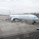 Aircanada plane at Haneda Airport in Tokyo, Tokyo, Japan
