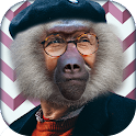 Animal Face Morph Photo Editor icon