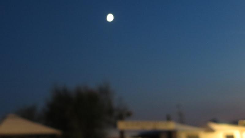Ecco la luna1 di Piera