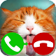 fake call cat 2 game APK