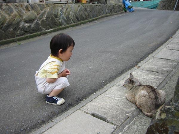 mèo và bé con