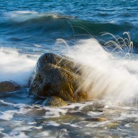 by Anngunn Dårflot - Nature Up Close Water