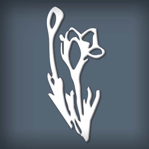 Fleurs de Mistral