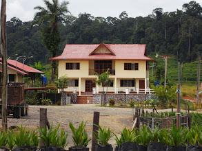 Photo: Rumah Banglo Pengurus dan Pelawat.