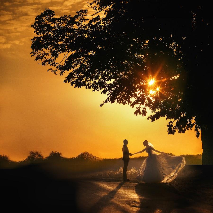 Fairy tale by DMYTRO SOBOKAR - Wedding Other ( story, wedding photography, sunset, wedding, summer, sobokar, fairytale, sun,  )