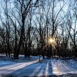 Long Shadows by Diane Ebert - Landscapes Sunsets & Sunrises ( #goldenhour, #longshadows, #iowawinter,  )