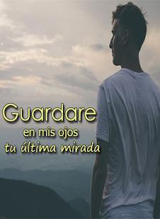 Frases De Despedida De Amor Slunecnice Cz