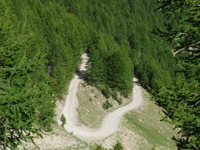 Photo: la piste serpente en forêt