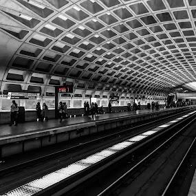 Subway Station by Chris Montcalmo - Transportation Railway Tracks ( colorsplash, subway, metro, station, architecture, transportation )