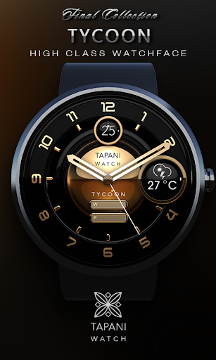 weather watch face Tycoon