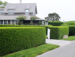 Photo: Erityisesti Nantucketilla puutarhanhoito oli viety huippuunsa - taisivat leikata pensasaitoja jos ei päivittäin niin ainakin viikottain
