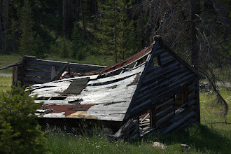 Photo: A marmot and old mining building at Quartz Hill