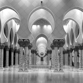 Grand Mosque. by Manoj Kumar Kd - Buildings & Architecture Places of Worship ( grand mosque, abu dhabi, mojofotography )