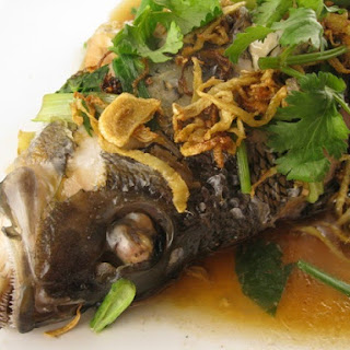 Steamed Black Sea Bass with Ginger and Garlic