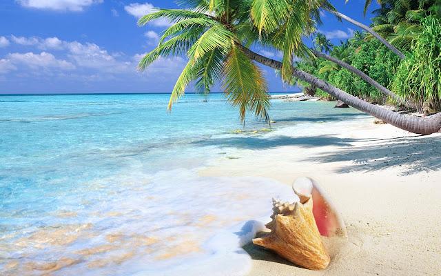 Beaches Tab