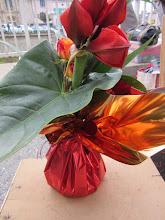 Photo: Bouquet amaryllis (fleurs rouge) avec roses orange, et feuillage anthurium  occasion : fête de fin d'année.  prix 18 euros  bouquet avec réserve d'eau