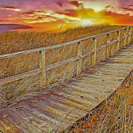 Walkway to the Rising Sun by Bill Diller - Digital Art Places ( tranquilty, sunrise, michigan, great lakes, walkway, port crescent state park, state park, colors, grasses, pathway, calmness, lake huron, boardwalk )