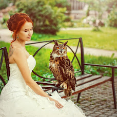 Wedding photographer Evgeniya Solnceva (solncevaphoto). Photo of 11.01.2014