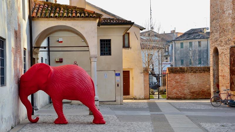 Elephant Red di giuseppedangelo
