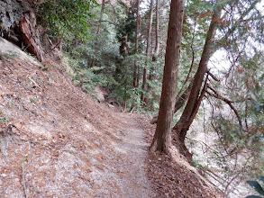 右下の林道が崩れ左上の道を進む