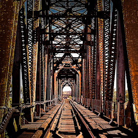 Tunnel Vision by Bets Wilson - Buildings & Architecture Bridges & Suspended Structures ( train, architecture, bridge, steel,  )