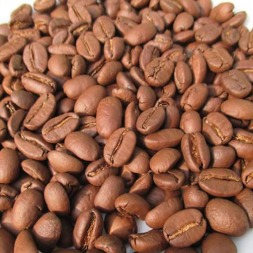 Lựa chọn cafe giá sỉ của Motherland tại sao không?