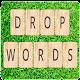 Drop Words (game)