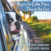 Music to Calm Your Dog in the Car (Soothing Sounds for Animal Companion, Relaxation & Stress Reduction During the Journey, Pet Therapy Ambient, Dogs Behavior and Training)