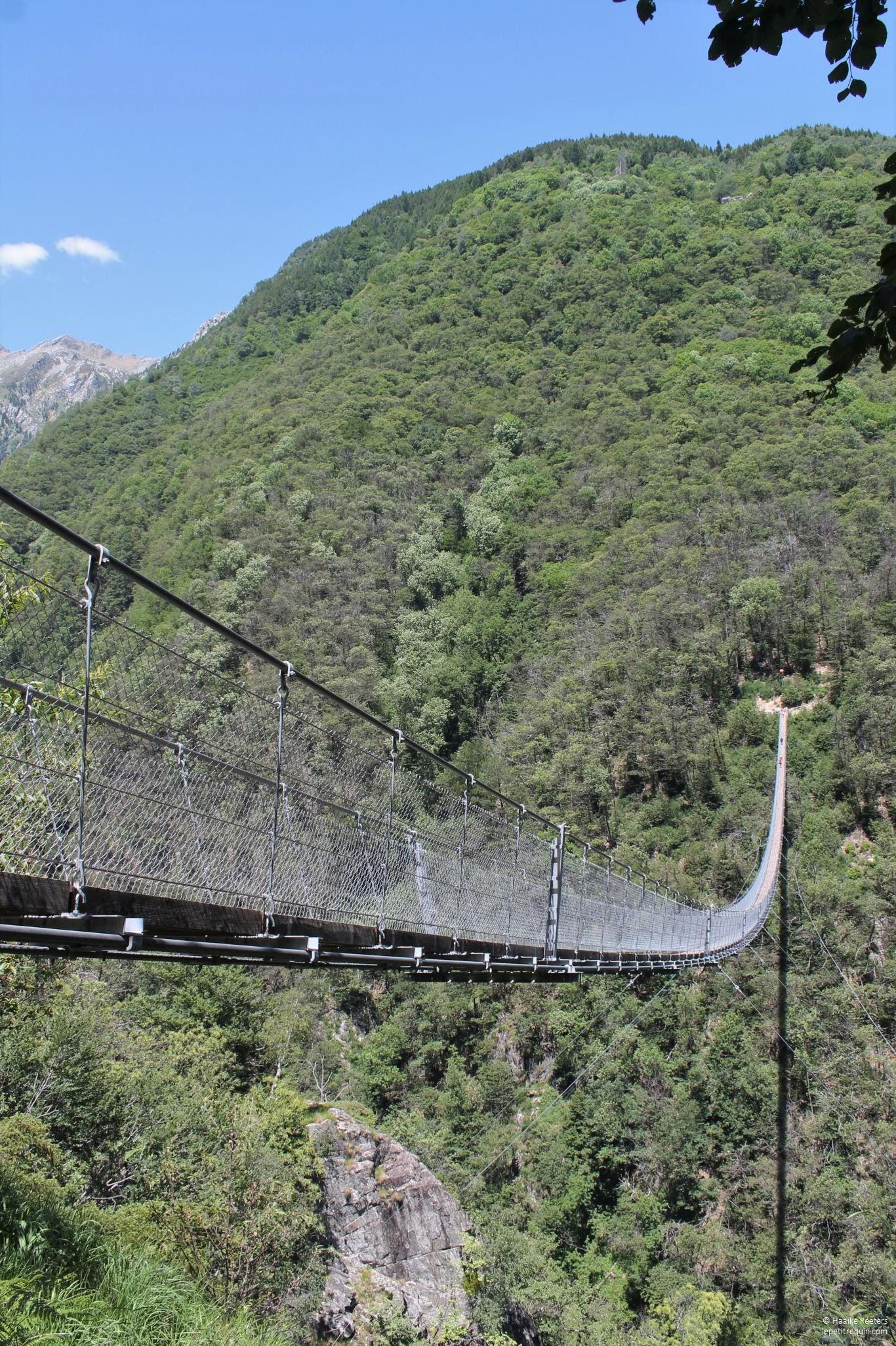Ponte Tibetano Carasc (Le petit requin)