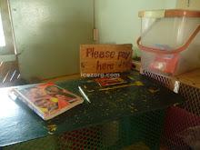 Honesty Payment Box