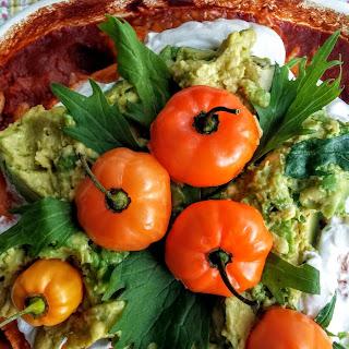 Quick Veggie Enchiladas