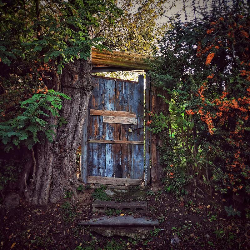 La porta verso gli orti di Sarett@