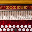 Hohner B/C Button Accordion icon
